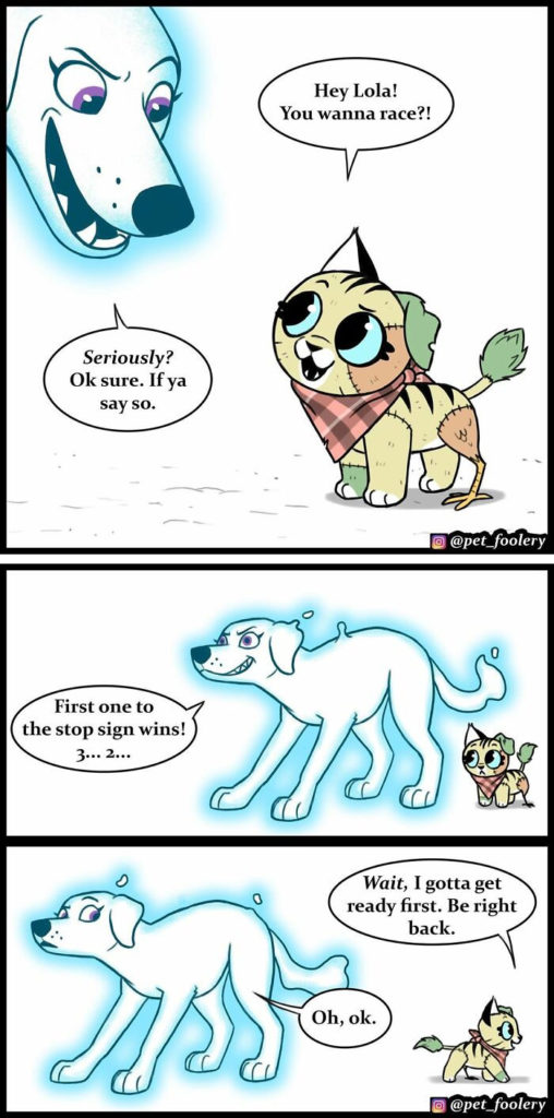 3 New Hilariously Adorable Comics About Pixie and Brutus To Instantly Make Your Day