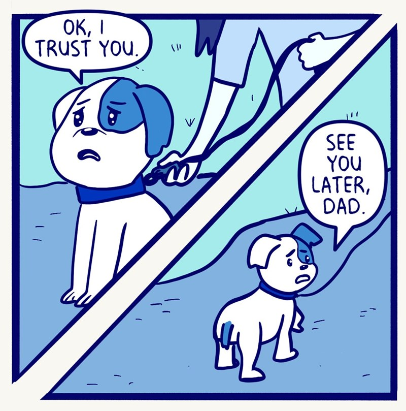 Pawsitively Precious: Artist Draws Comic About His Dog's Knee Surgery