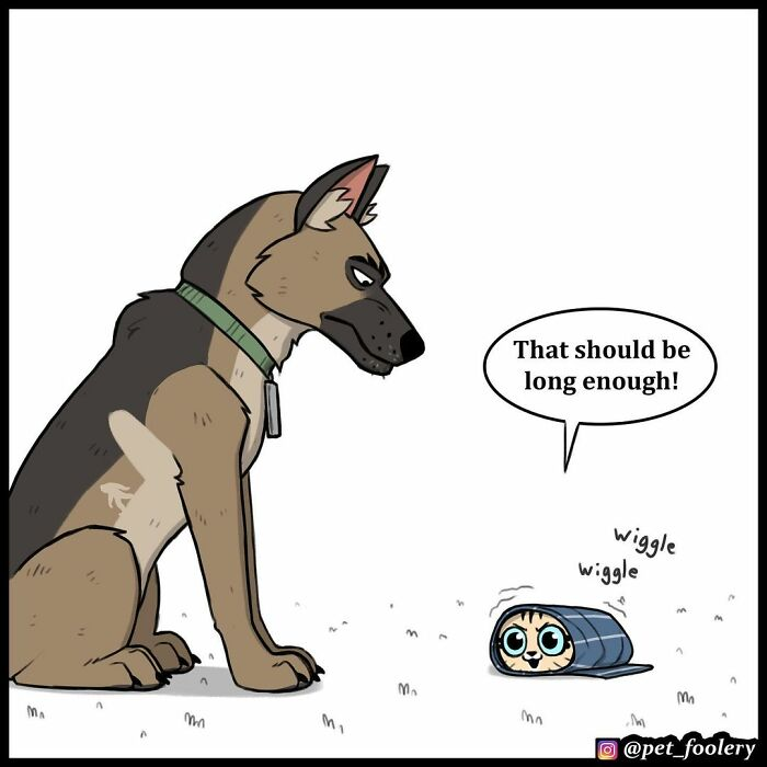 New Hilariously Adorable Comics About Pixie And Brutus To Instantly Make Your Day(4 comics)