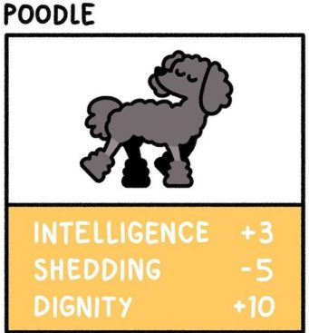 Artist Drawing 15 Interesting Dogs Stats in His Beautiful Artwork Style